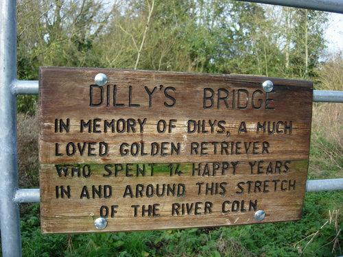 Dilly's bridge