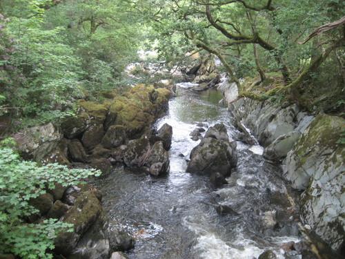 Stream? River?