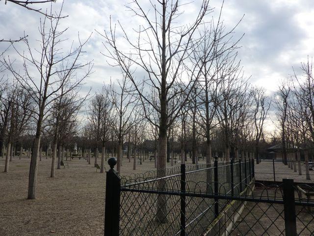 Jardin de Luxembourgh